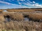 Brancaster circular walk (via Titchwell Marsh RSPB reserve)